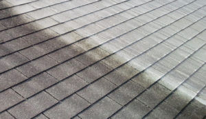 SoftWash Roof Cleaning in Pittsford, NY by BF Home Services