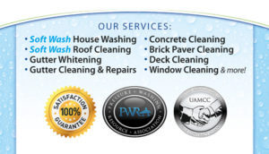 Softwash Housewashing in Rochester, NY by BF Home Services