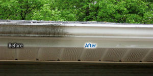 Rochester NY Gutter Exterior Whitening Cleaning Service